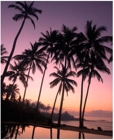 Bali and Singapore 2
